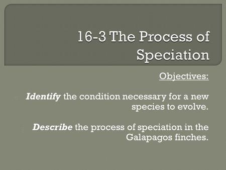 Objectives: o Identify the condition necessary for a new species to evolve. o Describe the process of speciation in the Galapagos finches.