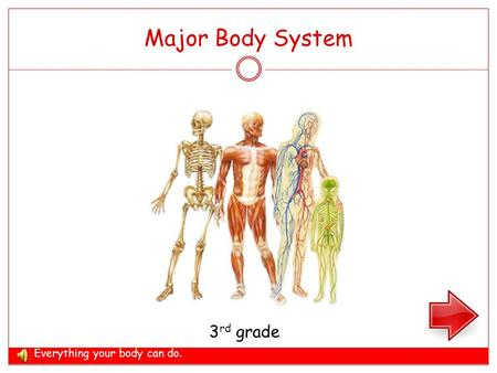 Major Body System 3 rd grade Everything your body can do.