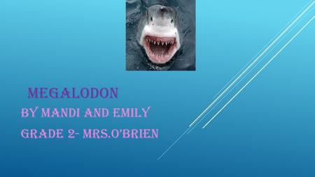 MEGALODON BY MANDI AND EMILY GRADE 2- MRS.O'BRIEN.