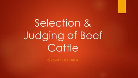 Selection & Judging of Beef Cattle AGRISCIENCE COURSE.