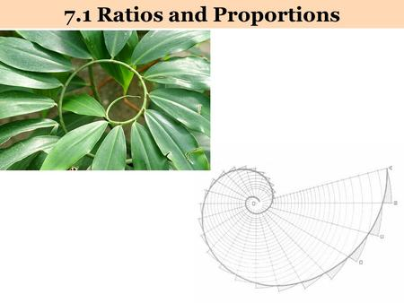 7.1 Ratios and Proportions. Ratios Ratio: A comparison of two quantities by division. 1) The ratio of a to b 2) a : b Ratios can be written in three ways…