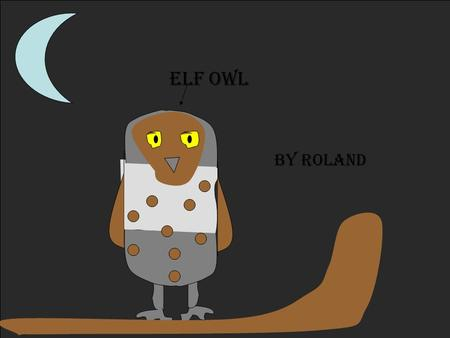 Elf owl By Roland. Description Coloring: Size: Physical Characteristics: Source #______16___ Gray to grayish brown, yellow eyes, and white I brow mark.