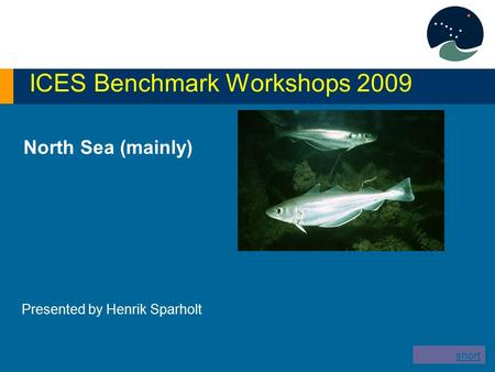 North Sea (mainly) ICES Benchmark Workshops 2009 Presented by Henrik Sparholt short version.