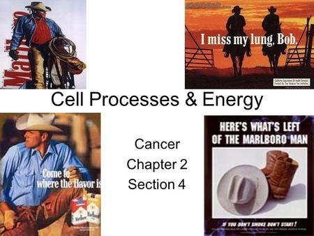 Cell Processes & Energy Cancer Chapter 2 Section 4.