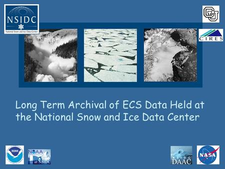 Long Term Archival of ECS Data Held at the National Snow and Ice Data Center.