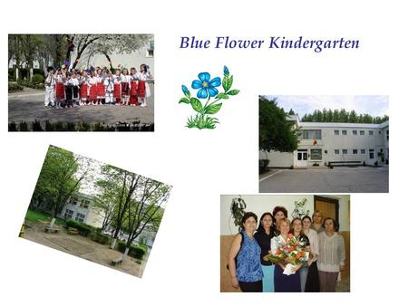 Blue Flower Kindergarten.  The kindergarten has got 12 groups with children between 3-7 years old.  The children receive a quality and modern education.