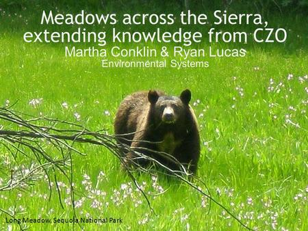 Picture of bear Meadows across the Sierra, extending knowledge from CZO Martha Conklin & Ryan Lucas Environmental Systems Long Meadow, Sequoia National.