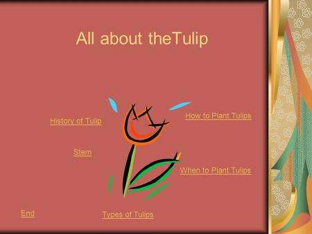 All about theTulip Stem When to Plant Tulips History of Tulip End Types of Tulips How to Plant Tulips.