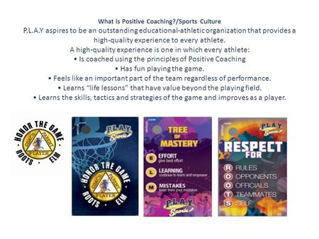 What is Positive Coaching?/Sports Culture P.L.A.Y aspires to be an outstanding educational-athletic organization that provides a high-quality experience.
