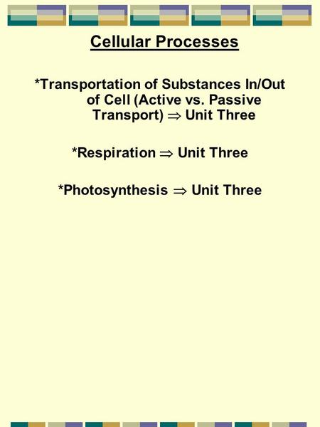 Cellular Processes *Transportation of Substances In/Out of Cell (Active vs. Passive Transport)  Unit Three *Respiration  Unit Three *Photosynthesis 