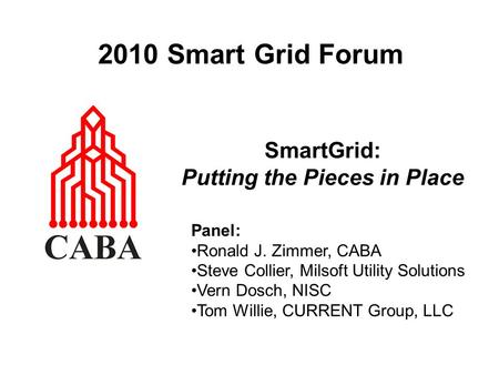 2010 Smart Grid Forum SmartGrid: Putting the Pieces in Place Panel: Ronald J. Zimmer, CABA Steve Collier, Milsoft Utility Solutions Vern Dosch, NISC Tom.