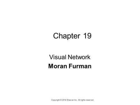 1 Copyright © 2014 Elsevier Inc. All rights reserved. Chapter 19 Visual Network Moran Furman.