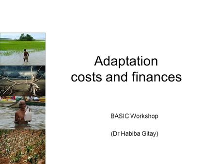 Adaptation costs and finances BASIC Workshop (Dr Habiba Gitay)