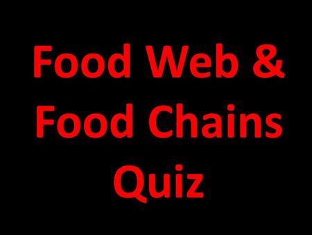 Food Web & Food Chains Quiz 1. an animal that eats only other animals A. consumer B. herbivore C. carnivore D. omnivore.