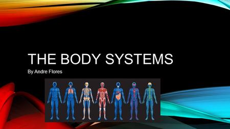THE BODY SYSTEMS By Andre Flores. CIRCULATORY SYSTEM.