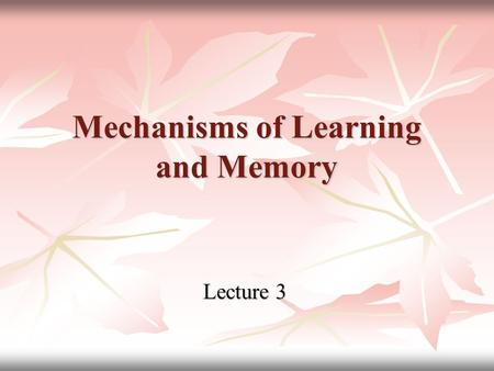Mechanisms of Learning and Memory Lecture 3. Memory as psychical function Memory function helps fixing of perceived information, keeping it in verbal.