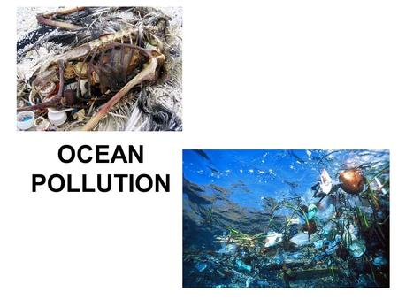 OCEAN POLLUTION. How Pollution Gets into the Oceans At least 85% of ocean pollution comes from activities on the land. Pollution can enter rivers and.