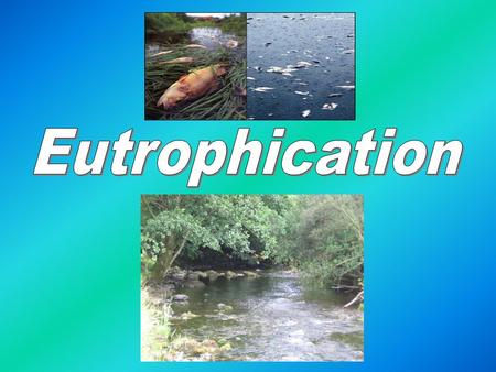 What is Eutrophication?? Waterways are naturally low in nutrients, this limits the growth of water plants. This is a process when a body of water such.