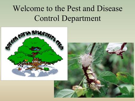 Welcome to the Pest and Disease Control Department.