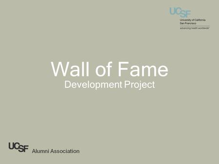 Wall of Fame Development Project. Design Examples.