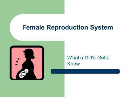Female Reproduction System What a Girl's Gotta Know.
