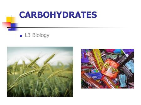 CARBOHYDRATES L3 Biology. Make the above structures (hydroxyl group on Carbon) Perform Dehydration Synthesis!