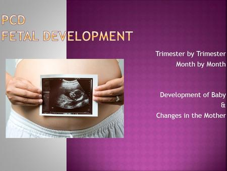 Trimester by Trimester Month by Month Development of Baby & Changes in the Mother.