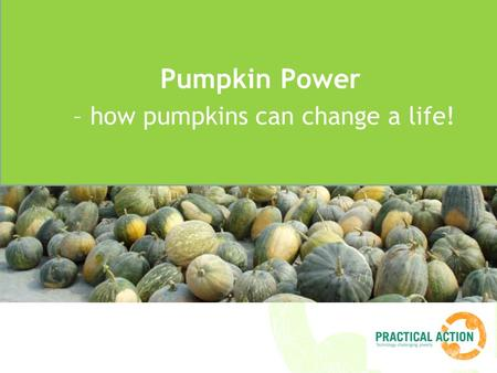 Title Pumpkin Power – how pumpkins can change a life!