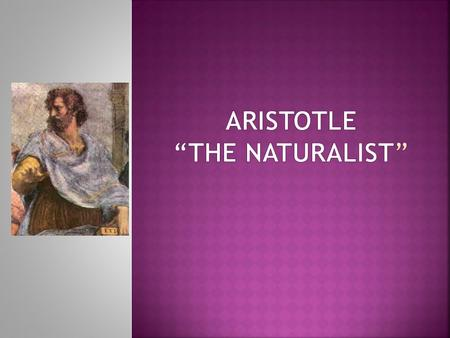 Aristotle is sometimes said to have brought philosophy down to earth, because he combined the study of humanity and nature. He stands alone as an archetype.