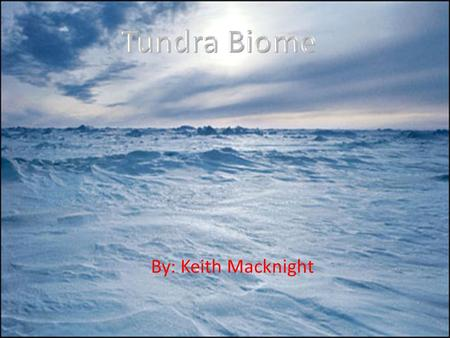 By: Keith Macknight. Tundra Biome facts Tundra Biomes are cold throughout the year. In summertime, the sun shines 24 hours a day, but it is still cold.