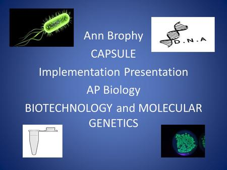 Ann Brophy CAPSULE Implementation Presentation AP Biology BIOTECHNOLOGY and MOLECULAR GENETICS.