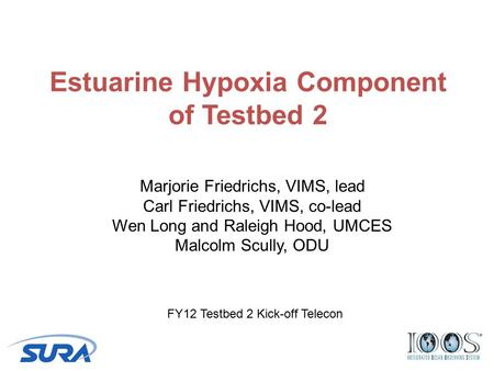 Estuarine Hypoxia Component of Testbed 2 Marjorie Friedrichs, VIMS, lead Carl Friedrichs, VIMS, co-lead Wen Long and Raleigh Hood, UMCES Malcolm Scully,