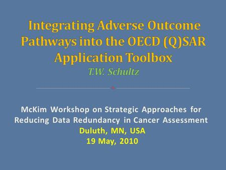 McKim Workshop on Strategic Approaches for Reducing Data Redundancy in Cancer Assessment Duluth, MN, USA 19 May, 2010.