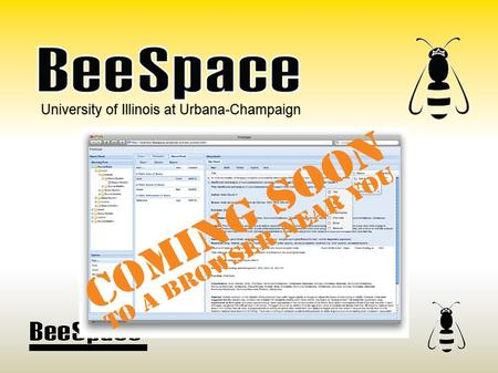 University of Illinois at Urbana-Champaign. BeeSpace Project 5-year NSF-funded project Project Goals  Develop open bioinformatics resources  Support.