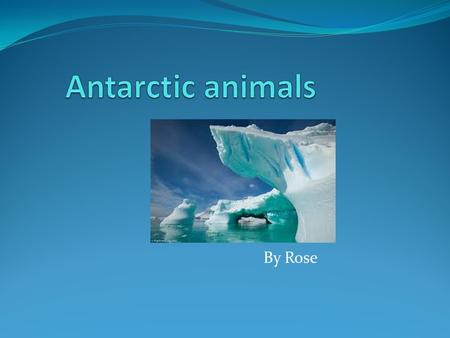 By Rose. Antarctica is a very cold place, so animals have to adapt to it in special ways Not many people go there because it is to cold. But when you.