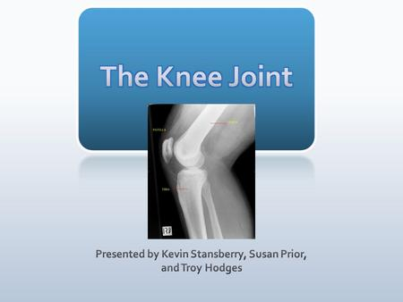 **Longest and heaviest bone in the body** **Large, weight bearing (shin bone)**