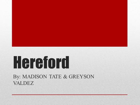 Hereford By: MADISON TATE & GREYSON VALDEZ. Picture of Hereford.