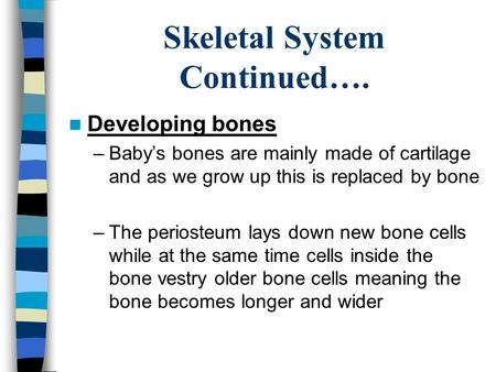 Skeletal System Continued…. Developing bones –Baby's bones are mainly made of cartilage and as we grow up this is replaced by bone –The periosteum lays.
