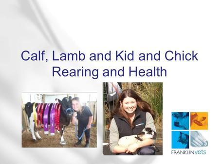 Calf, Lamb and Kid and Chick Rearing and Health. What does your pet need to keep it happy?