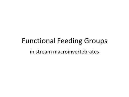 Functional Feeding Groups in stream macroinvertebrates.