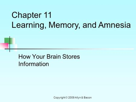 Copyright © 2009 Allyn & Bacon How Your Brain Stores Information Chapter 11 Learning, Memory, and Amnesia.