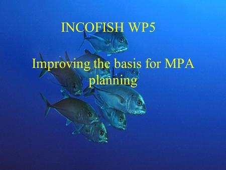 Improving the basis for MPA planning INCOFISH WP5.
