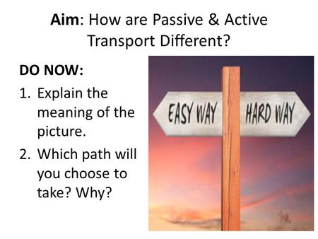 Aim: How are Passive & Active Transport Different? DO NOW: 1.Explain the meaning of the picture. 2.Which path will you choose to take? Why?