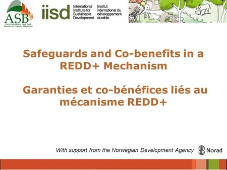 Safeguards and Co-benefits in a REDD+ Mechanism Garanties et co-bénéfices liés au mécanisme REDD+ With support from the Norwegian Development Agency.