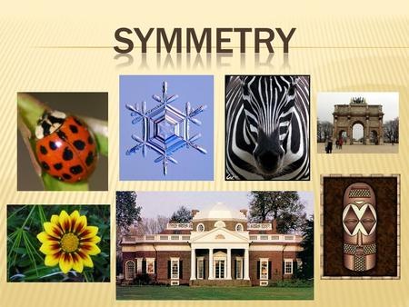 Symmetry Our mind is constnatly trying to make sense of information. Our mind automatically looks for patterns. The world around us is based on symmetry,