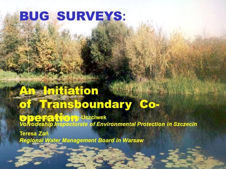 BUG SURVEYS : An Initiation of Transboundary Co- operation Małgorzata Landsberg-Uczciwek Voivodeship Inspectorate of Environmental Protection in Szczecin.