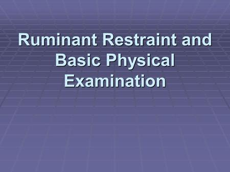 Ruminant Restraint and Basic Physical Examination.