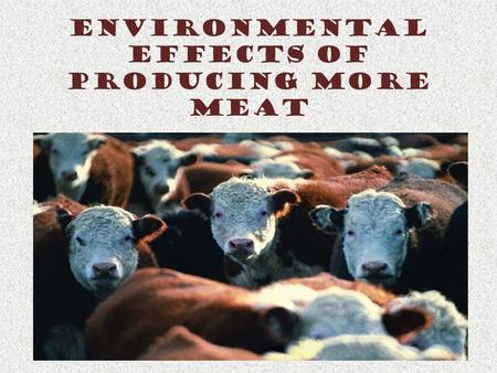 Environmental Effects of Producing More Meat. Background Facts Meat, milk & cheese – High quality protein 1950 – 2005 – Meat production increased more.