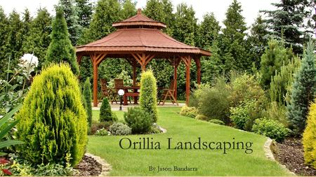Orillia Landscaping By Jason Bandarra. My business. I own a Landscaping business called Orillia Landscaping. It is a small business that I have invested.