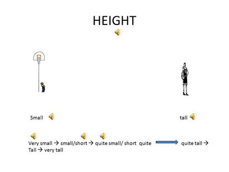 HEIGHT Smalltall Very small  small/short  quite small/ short quite quite tall  Tall  very tall.